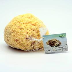 Caribbean Sun Mořská houba Wool, SWL 326 1 ks, 12-13 cm