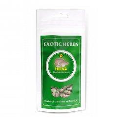 Exotic Herbs Hlíva ústřičná, kapsle 100 ks