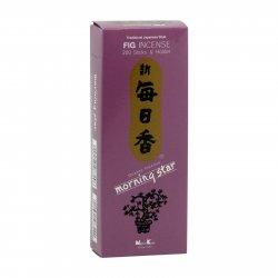 Nippon Kodo Vonné tyčinky japonské Morning Star Fig 200 ks