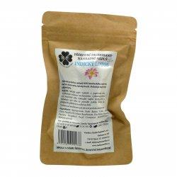 RaE Přírodní deodorant s vůní indického lotosu 22 g náhradní náplň