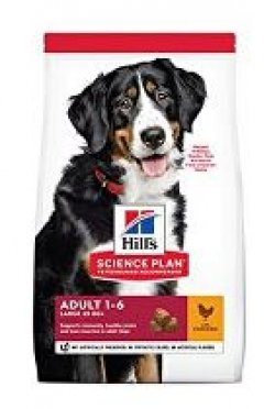 Hill's Can.Dry SP Adult Large Chicken 18kg