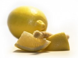 Siwak - přírodní zubní kartáček s příchutí citronu - pro svěží chuť ve vašich ústech