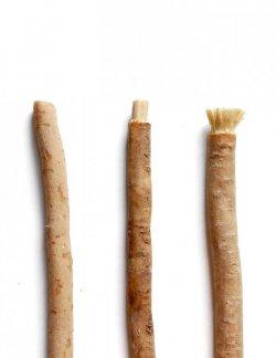 Yoni Přírodní zubní kartáček Miswak (samostatný) - přirozeně čistí, posiluje i bělí zuby