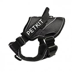 PetKit - černá  S + 30 dní na vyzkoušení